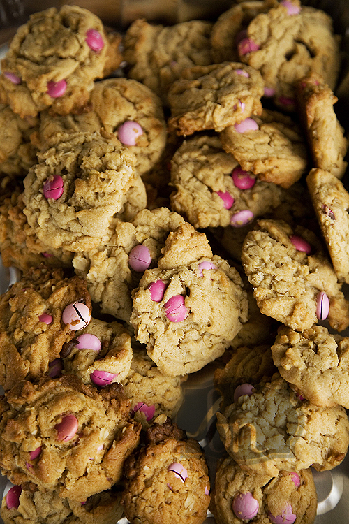 Cookies 008 web