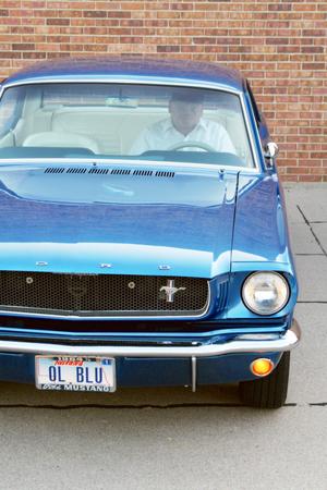 Mustang_034