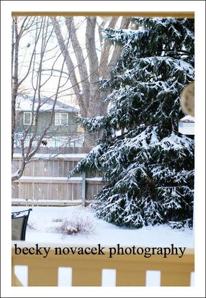 Snow_001_web