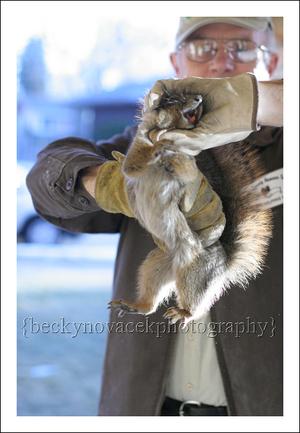 Squirrel_003_web