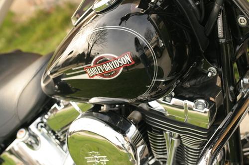 Harley_003